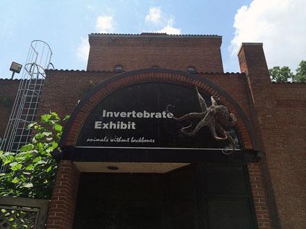 National Zoo Invertebrate Exhibit